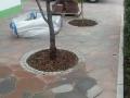 Beton Ploygonalplatten bau, Baumpflanzen